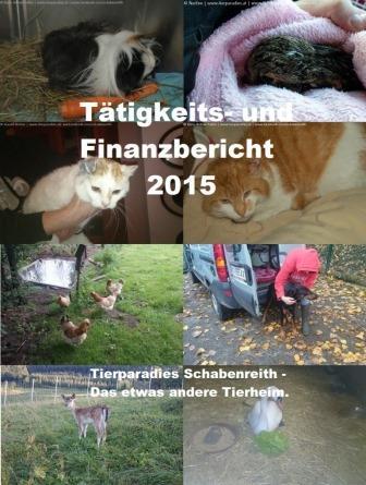 finanzbericht-2015